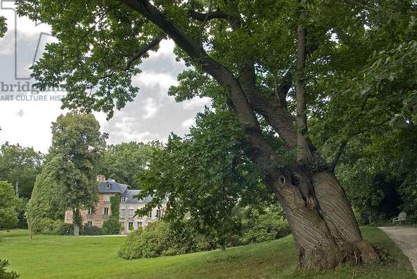 Parc de la maison de Chateaubriand/La Vallee aux Loups/Ch, aenay Malabry/Hauts de Seine/France