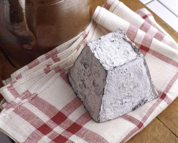 Cheese/Valencay