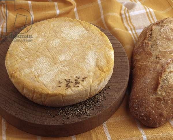 Cheese/Munster