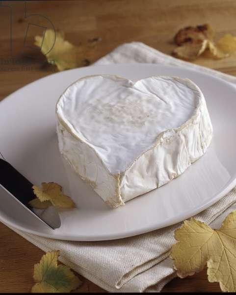 Cheese/Neufchatel