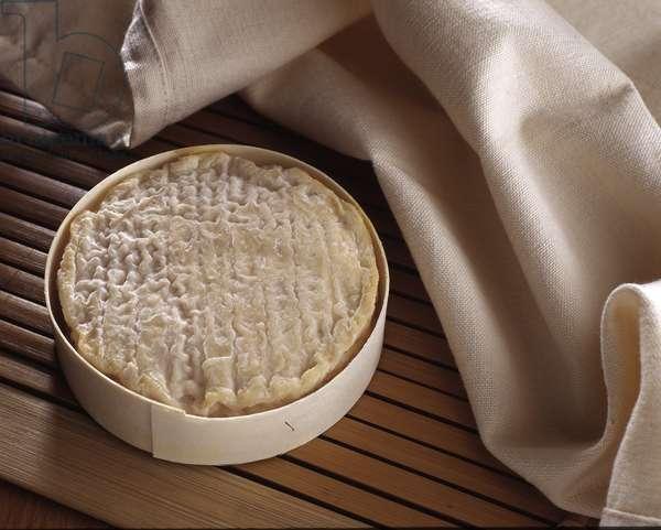Cheese/Perail