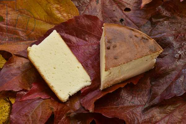 Delice of the Gods/Cheese Cake