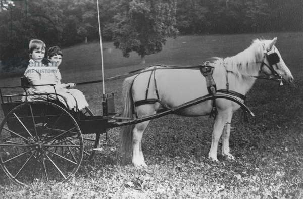 Amy and Julia du Pont with their pony driven buggy (b/w photo)