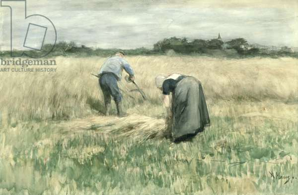 The Harvest (w/c on paper)