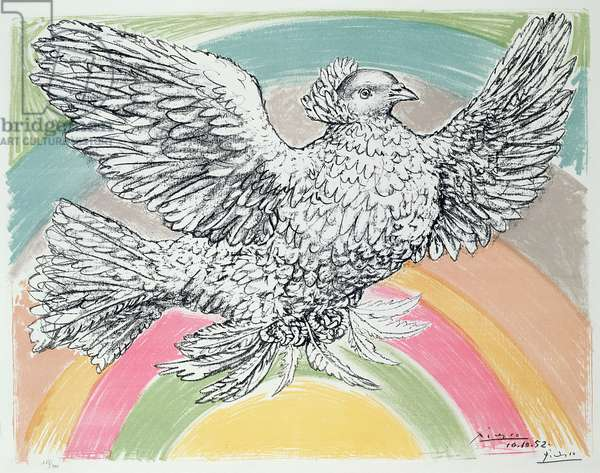 Flying dove with a rainbow, 1952