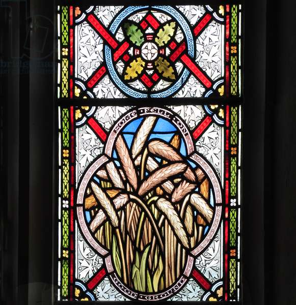 Detail of window depicting 'The Sower', 1876 (stained glass)