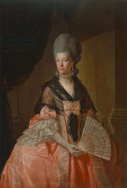 Sophie Charlotte, Queen of England, 1779 (oil on canvas)