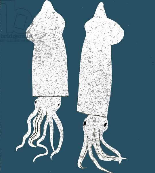 Squid, 2008-09 (mixed media)
