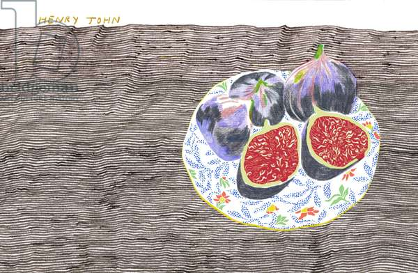 Figs, 2008-09 (mixed media)