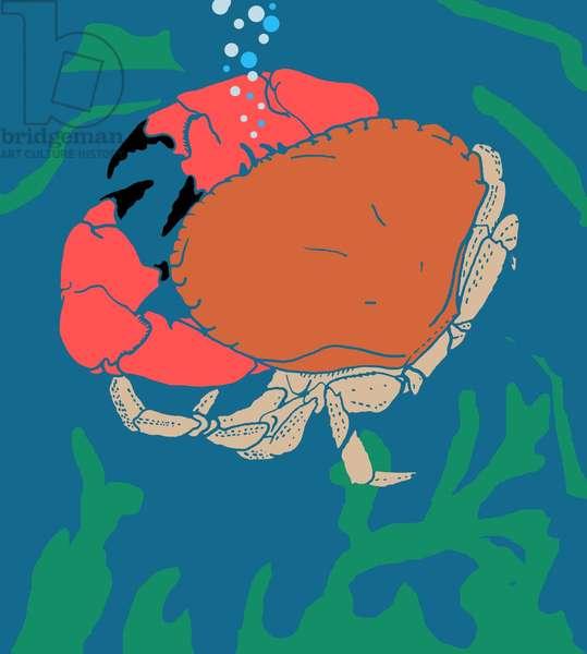 Crab, 2008-09 (mixed media)