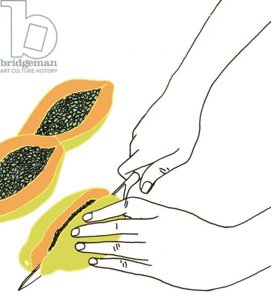 Papaya, 2008-09 (mixed media)