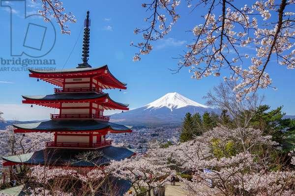 Mount Fuji from Chureito Pagoda, Kawaguchiko, Japan (photo)