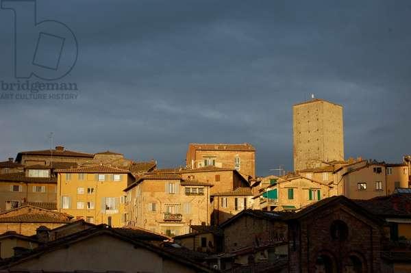 Sunset, Siena, Italy (photo)