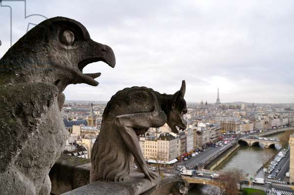 Notre Dame Gargoyles, Paris, France (photo)