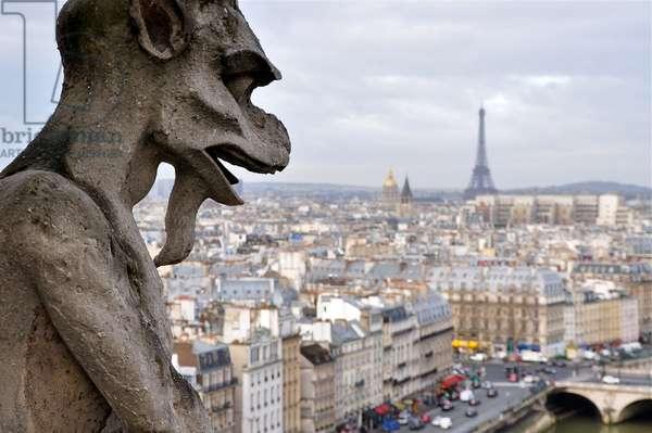 Notre Dame Gargoyle, Paris, France (photo)