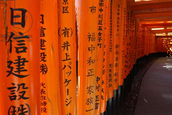 Fushimi Inari Shrine, Kyoto, Japan (photo)
