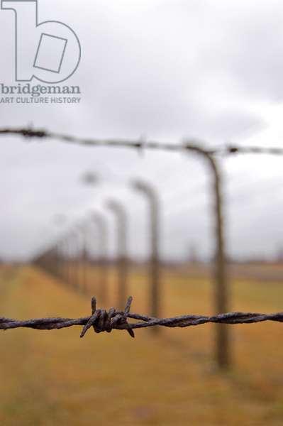 Auschwitz II-Birkenau (photo)