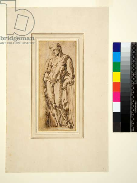 Study of an Antique Statue, 1550-1600 (pen and brown ink)