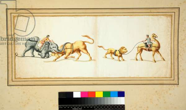 Copy of a mosaic of an Elephant fighting against a bull (black chalk, some with pen and brown ink. coloured with w/c)