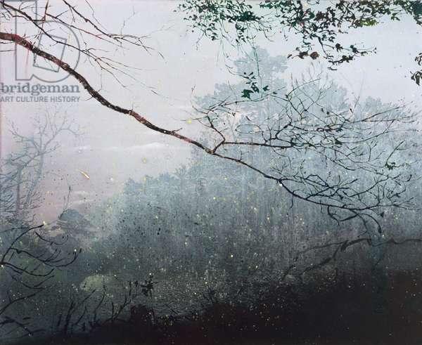 Greyscale (2), 2005 (oil on canvas)