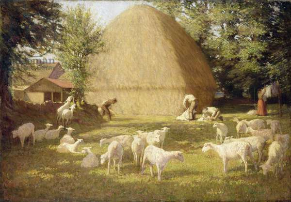 Sheepshearing, 1901 (oil on canvas)