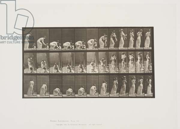 Plate 214 from Animal Locomotion, 1887 (collotype on paper)