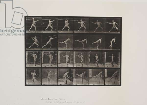 Plate 361 from Animal Locomotion, 1887 (collotype on paper)