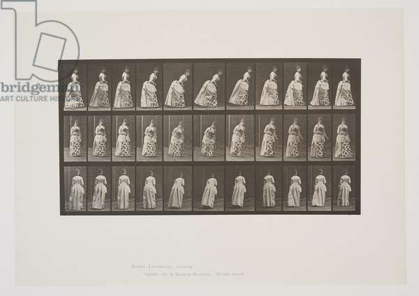 Plate 198 from Animal Locomotion, 1887 (collotype on paper)