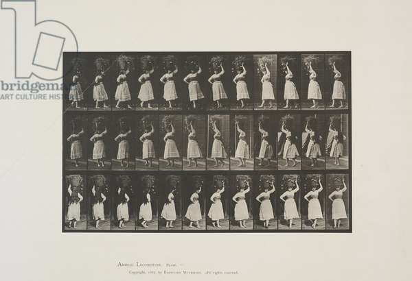 Plate 57 from Animal Locomotion, 1887 (collotype on paper)