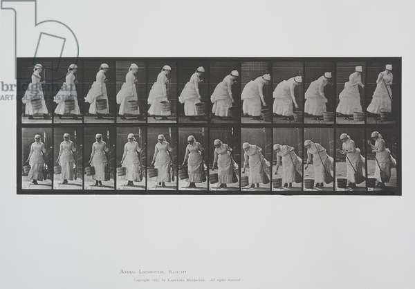 Plate 437 from Animal Locomotion, 1887 (collotype on paper)