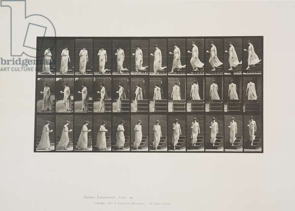 Plate 143 from Animal Locomotion, 1887 (collotype on paper)