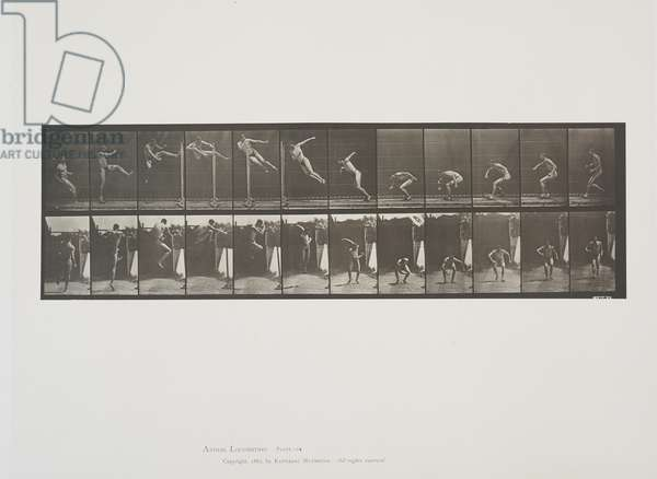 Plate 158 from Animal Locomotion, 1887 (collotype on paper)