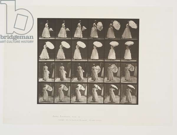 Plate 38 from Animal Locomotion, 1887 (collotype on paper)