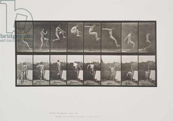 Plate 160 from Animal Locomotion, 1887 (collotype on paper)