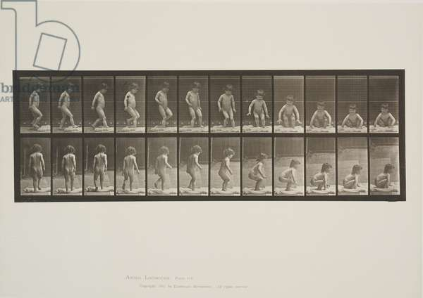 Plate 476 from Animal Locomotion, 1887 (collotype on paper)