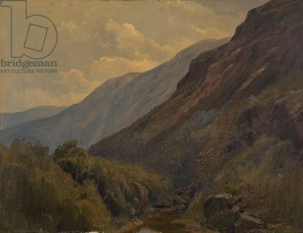 Landscape (oil on paper mounted on paperboard)