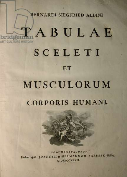 Albinus I, Title Page, from 'Tabulae sceleti et musculorum corporis humani', by Bernhard Siegfried Albinus (1697-1770), published by J.&H. Verbeek, bibliop., Leiden, 1747 (engraving)