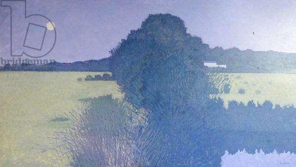 Large Landscape, 1970 (oil on board)