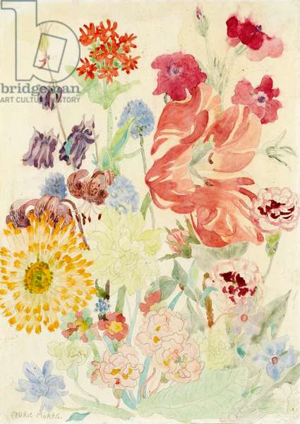 A display of summer flowers (varnished w/c over pencil)