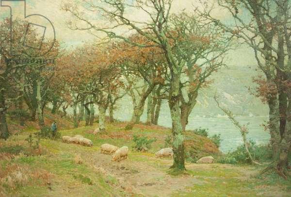 Fallen Acorns, 1904 (oil on canvas)