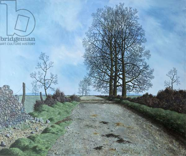 January Landscape, Somerset, 1962 (oil on canvas)