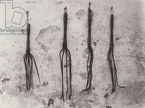 Cat O' Nine Tails found in the German trenches, Western Front, 1914-18 (b/w photo)