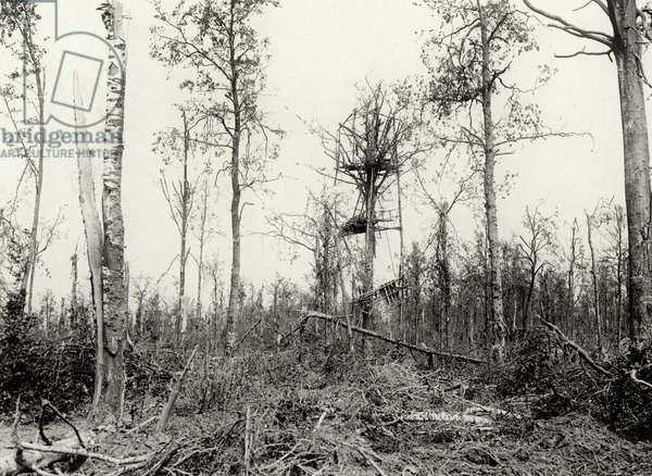 A German look-out post in Mametz wood on the Western Front, 1914-18 (b/w photo)