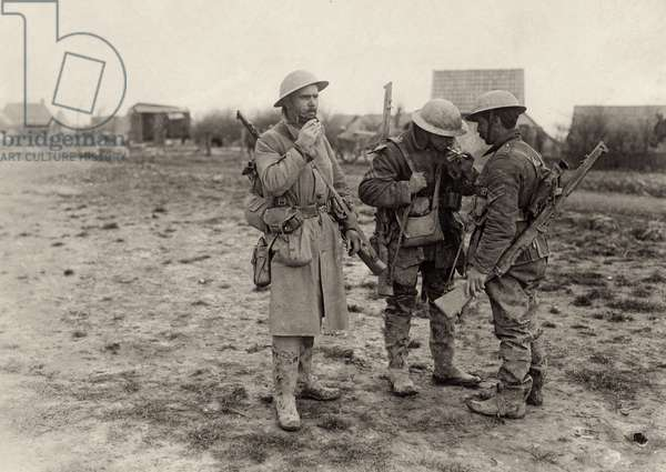 Three Sergeants of the Northumberland Fusiliers, 3rd Division, after the attack on St. Eloi, 27th March 1916 (b/w photo)