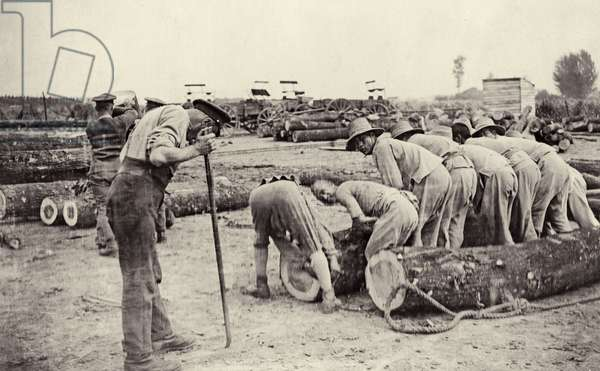 Chinese labourers moving logs for the construction of roads, Flanders, 1914-18 (b/w photo)