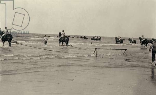 Army Service Corps members shrimping on the Belgian coast during WWI, 1914-18 (b/w photo)