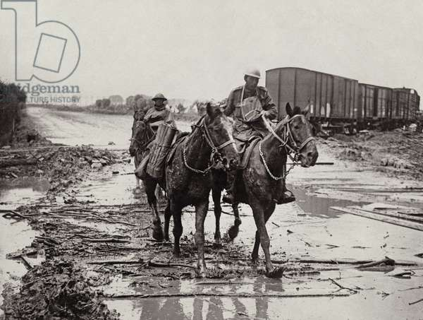 Pack horses coming through the mud, 1914-18 (b/w photo)
