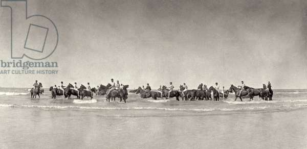 Horses and men of the Army Service Corps enjoying themselves in the sea after being up in the line for a long time, 1914-18 (b/w photo)