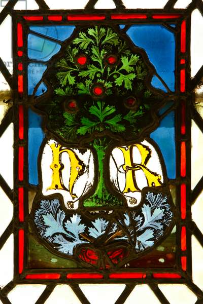 Window depicting a tree and the initials H. R. (stained glass)