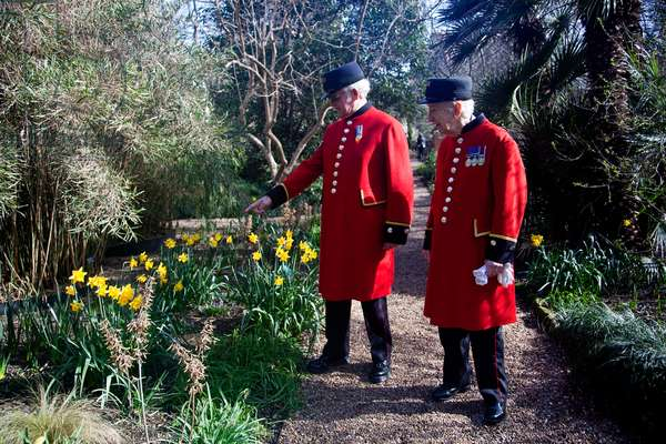 Chelsea Pensioners at the Royal Hospital Chelsea (photo)